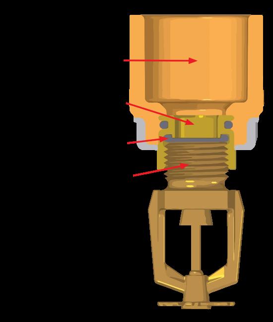 spears torquesafe