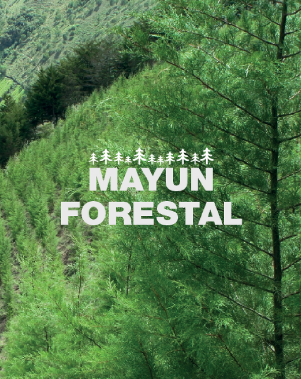 MAYUN FORESTAL